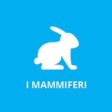 Albo 2 - I mammiferi